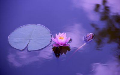 Angelic Energy Meditation